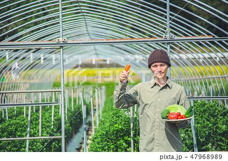 就農 ふるさと納税 47968989