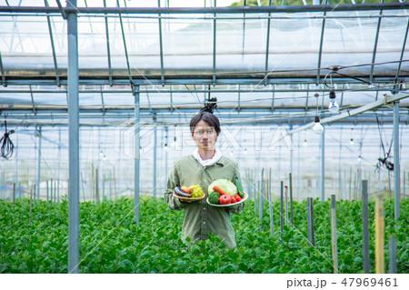 就農 ふるさと納税 47969461
