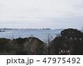 埠頭風景 47975492