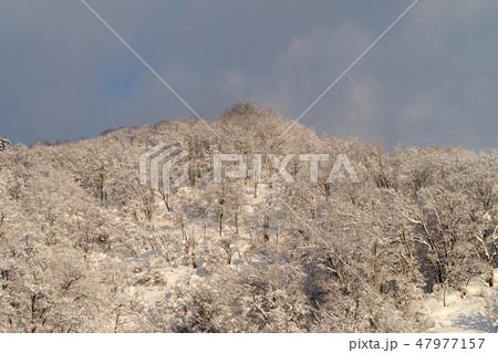 冬の雪山 47977157