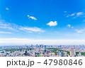 【東京都】爽やかな都市風景(6月) 47980846