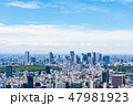 東京都 都市風景 都会の写真 47981923