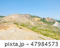 磐梯吾妻スカイライン 浄土平 観光道路の写真 47984573