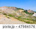 磐梯吾妻スカイライン 浄土平 観光道路の写真 47984576