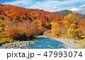 川 山 景色の写真 47993074