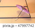 傘 お茶 赤の写真 47997742