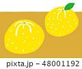 柚子 水彩 48001192