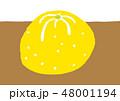 柚子 水彩 48001194