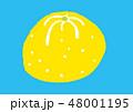 柚子 水彩 48001195