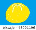 柚子 水彩 48001196