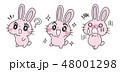 キャラクター セット 表情のイラスト 48001298