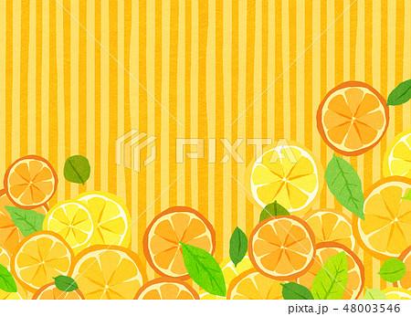 フェルト 柑橘類 コラージュ 48003546
