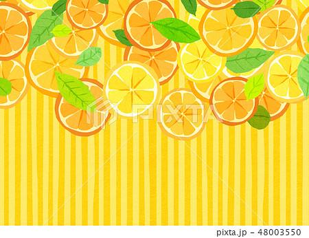 フェルト 柑橘類 コラージュ 48003550