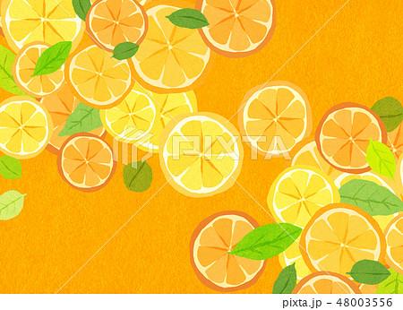 フェルト 柑橘類 コラージュ 48003556