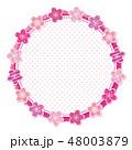 桜 フレーム 丸のイラスト 48003879