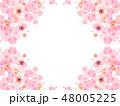 桜 花 ベクターのイラスト 48005225