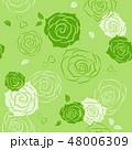 ばら 花 ベクターのイラスト 48006309