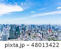 東京都 都市風景 東京タワーの写真 48013422