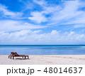 砂浜 ビーチ 海の写真 48014637