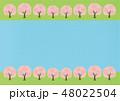 桜 花 春のイラスト 48022504