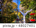 (東京都)紅葉した高尾山にリフトで登る 48027401