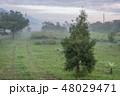 景色 風景 景観の写真 48029471