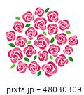 ばら 花 ベクターのイラスト 48030309