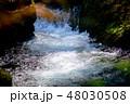 菊池渓谷③ 48030508