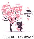 バレンタイン キューピット キューピッドのイラスト 48036987