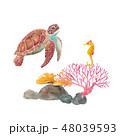 海の生き物-ウミガメとタツノオトシゴ、サンゴ礁 48039593