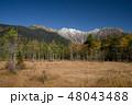 紅葉の上高地 田代湿原と穂高連峰 48043488
