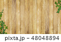 背景-壁-木目-葉-ツタ-春-夏 48048894