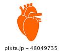 シルエット 臓器 内臓のイラスト 48049735