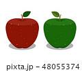 りんご リンゴ フルーツのイラスト 48055374