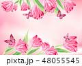 花 お花 フラワーのイラスト 48055545