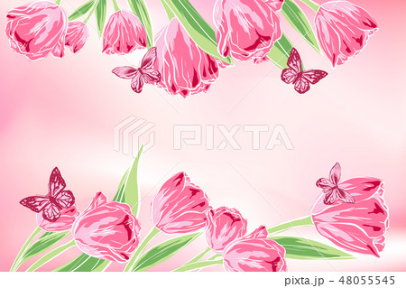 vector floral template greeting card. pink beautiful tulips, butterfly. Isolated. hand drawn 48055545