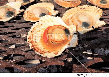 美味しそうなホタテの網焼き、BBQ、魚介類、うまい、日本の食文化 48066586