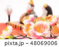 桃の花と雛人形 48069006