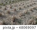 水田・収穫 48069097
