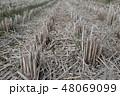 水田・収穫 48069099