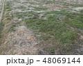 放棄・土地・畑 48069144