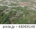 放棄・土地・畑 48069146