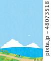 夏素材(縦)-ひまわりと海の見える風景5テク 48073518