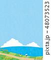 夏素材(縦)-ひまわりと海の見える風景6テク 48073523