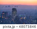 《東京都》雨上がり・霧に包まれた東京の夜景《恵比寿方面・武蔵小杉の高層マンション群》 48073846
