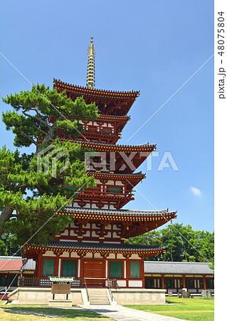 奈良・薬師寺 48075804