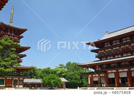 奈良・薬師寺 48075808