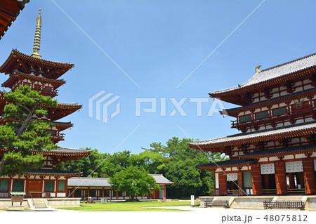 奈良・薬師寺 48075812