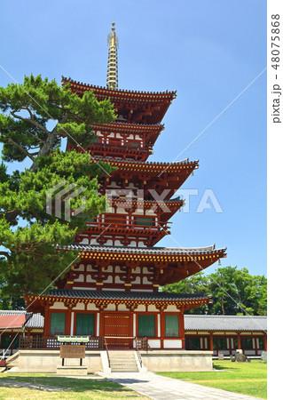 奈良・薬師寺 48075868
