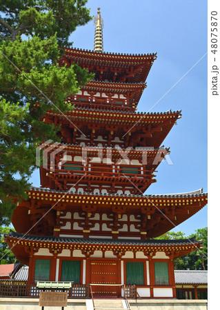 奈良・薬師寺 48075870